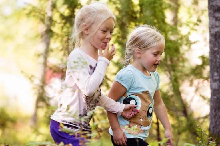 Vandring i södra Dalarna | Perfekt för barn & nybörjare